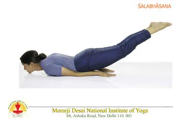 yoga postures  international day of yoga  mea